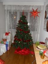 Merry Christmas 2014 ! (8)