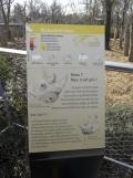 Zoo de Vincennes (147)