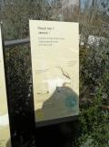 Zoo de Vincennes (167)