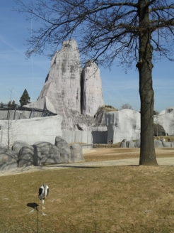 Zoo de Vincennes (223)