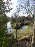 Zoo de Vincennes (225)