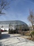 Zoo de Vincennes (231)