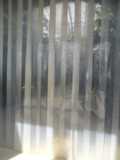 Zoo de Vincennes (235)
