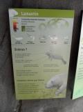 Zoo de Vincennes (277)