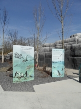 Zoo de Vincennes (47)