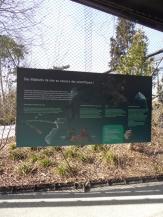 Zoo de Vincennes (85)