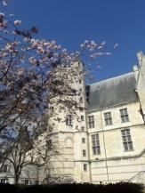 3. Le Palais Jacques-Cœur (253)