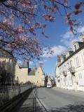 3. Le Palais Jacques-Cœur (257)