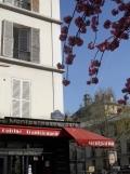 Musée Bourdelle (1)