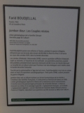 Musée de l'histoire de l'Immigration (93)