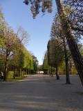 Parc de Sceaux en bicyclette (3)