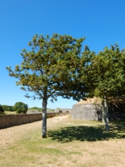 Citadelle de Belle Île en Mer (99)