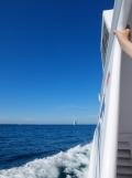 De Belle Île à Vannes en bateau ! (16)