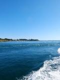 De Belle Île à Vannes en bateau ! (36)