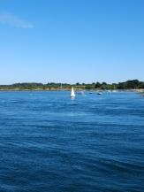 De Belle Île à Vannes en bateau ! (37)