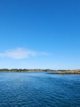 De Belle Île à Vannes en bateau ! (38)
