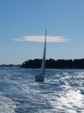 De Belle Île à Vannes en bateau ! (40)