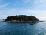 Vers Belle Île en Mer (11)