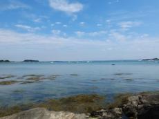 2. vers l'île d'Arz et retour (146)