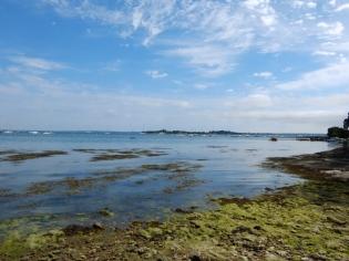 2. vers l'île d'Arz et retour (149)