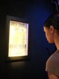 L'exposition Harry Potter (108)