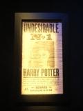 L'exposition Harry Potter (109)