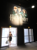 L'exposition Harry Potter (155)
