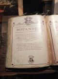 L'exposition Harry Potter (42)