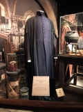 L'exposition Harry Potter (51)
