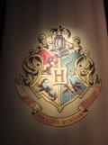 L'exposition Harry Potter (52)