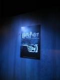 L'exposition Harry Potter (84)