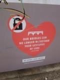 Love-locks bridge (59)