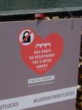 Love-locks bridge (62)