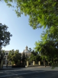 2.Sevilla por la noche (1)