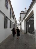 2. Sinagoga (40)
