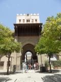 8.Catédral de Sevilla (13)