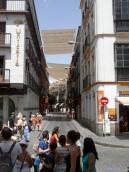 8.Catédral de Sevilla (22)
