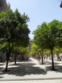 8.Catédral de Sevilla (3)