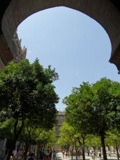 8.Catédral de Sevilla (4)