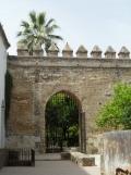Alcázar de los Reyes Cristianos (101)