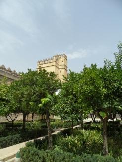 Alcázar de los Reyes Cristianos (103)
