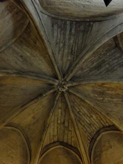 Alcázar de los Reyes Cristianos (130)