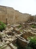 Alcázar de los Reyes Cristianos (141)