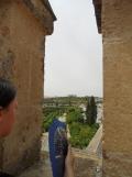 Alcázar de los Reyes Cristianos (166)