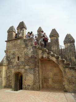 Alcázar de los Reyes Cristianos (168)