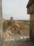 Alcázar de los Reyes Cristianos (170)