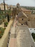 Alcázar de los Reyes Cristianos (173)