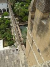 Alcázar de los Reyes Cristianos (175)