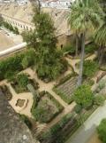 Alcázar de los Reyes Cristianos (178)
