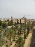 Alcázar de los Reyes Cristianos (180)